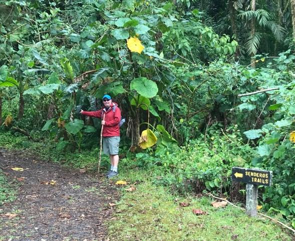 fullsizeoutput_aee-1024x838 Hiking Panama's Amistad International Park Hiking in Panama Panama The Great Outdoors