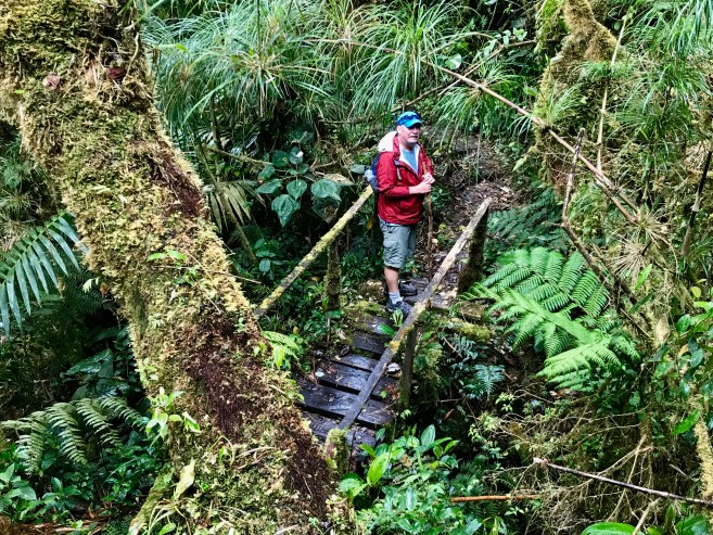fullsizeoutput_af9 Hiking Panama's Amistad National Park Hiking in Panama The Great Outdoors