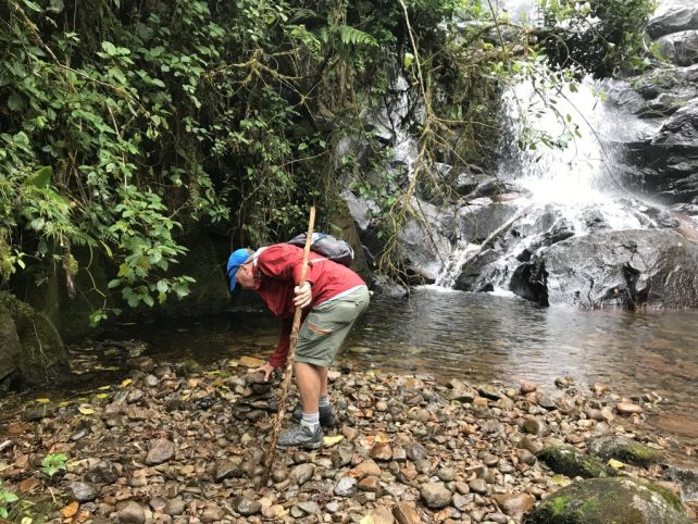 q4Dt2zCRRkSj7jAV2XW2lQ-1024x768 Hiking Panama's Amistad National Park Hiking in Panama The Great Outdoors
