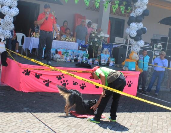 fullsizeoutput_d06-300x234 Founders' Week in Boquete Town Boquete Panama