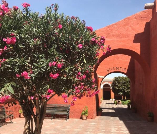 fullsizeoutput_f8c-1024x876 Peru Explorations: Arequipa Arequipa Peru