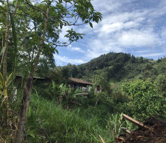 fullsizeoutput_20e5-1024x886 Staying Fit in Medellín Colombia Medellin