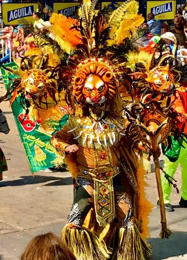 95837CFD-A14D-4437-9381-E6B2779DFC04 Colombia's Carnival! Colombia