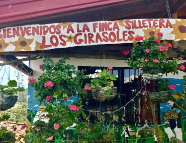 A Visit to a Colombian Flower Finca