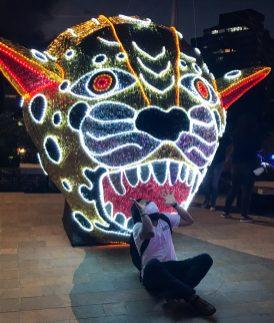 01635462-9EEF-4C75-9F20-BD3FC87755F0-scaled ¡Feliz Navidad! Medellín Lights Up for Christmas Colombia Medellin