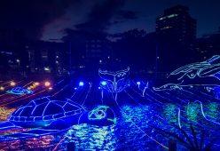 3D04C856-B304-47A8-B422-C7FDC7ECFD73-scaled ¡Feliz Navidad! Medellín Lights Up for Christmas Colombia Medellin