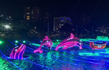 AEA09C45-D264-4E83-B253-1C1632281FF4-scaled ¡Feliz Navidad! Medellín Lights Up for Christmas Colombia Medellin