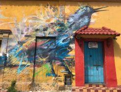 IMG_1344-scaled Cartagena Street Art Walking Tour Colombia