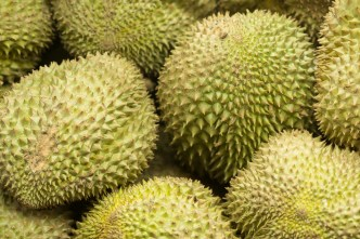 Durian fruit .. a delicacy to some, revolting to others!