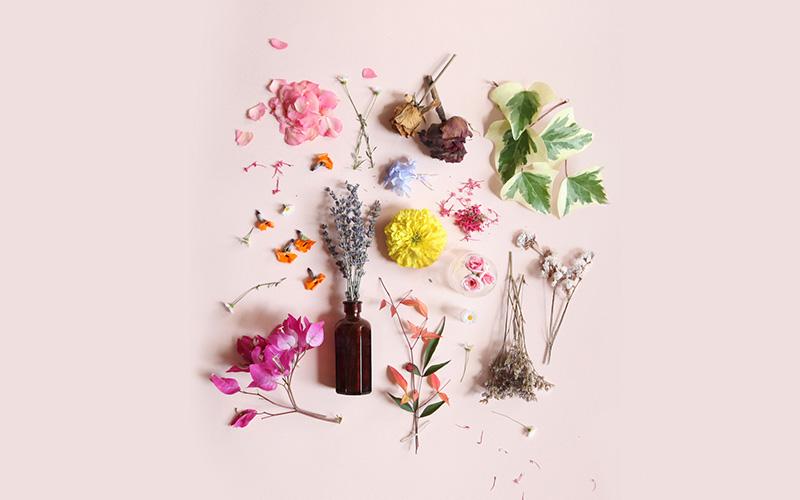 8 Inspiring Things For Spring