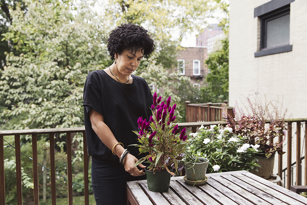 A Window In: Sabrina Ramos' Prospect Heights Brownstone