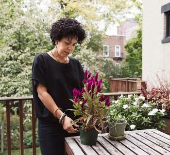 A Window In: Sabrina Ramos' Prospect Heights Brownstone