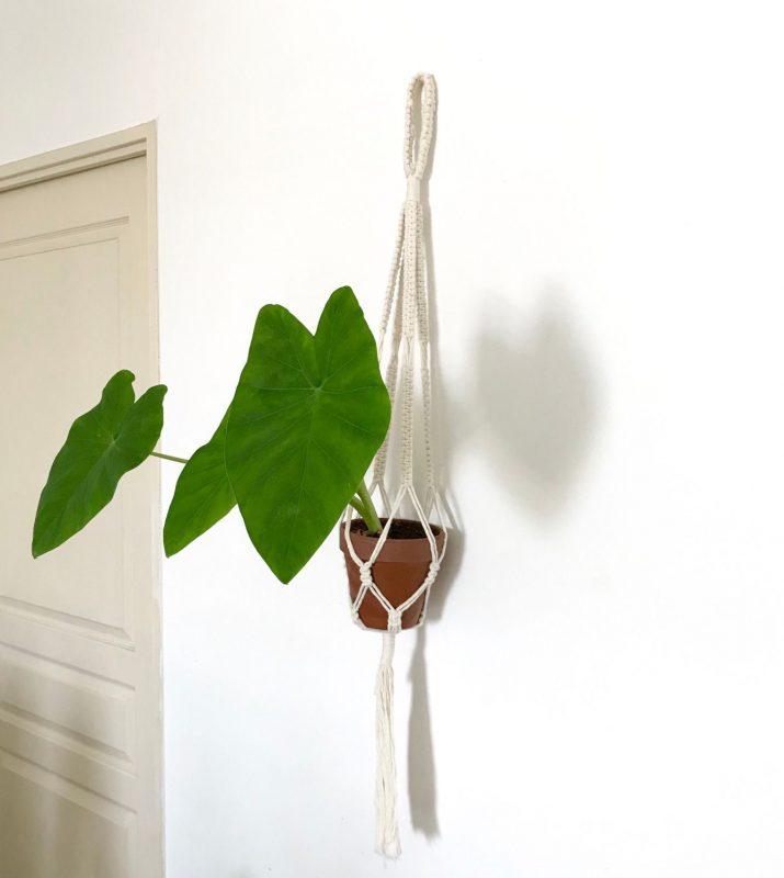 suspension pour plante en macrame