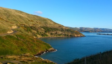 Península de Otago. Camino a Taiaroa Head.