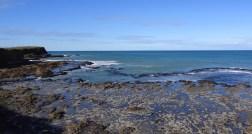 Catlins. Curio Bay