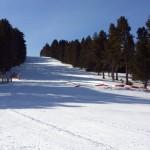 Tortuga con esquís: Tuixent