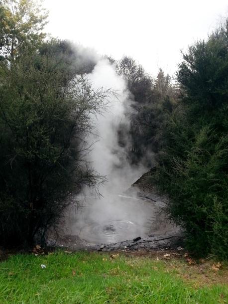 El parque de Rotorua es un espectáculo humeante