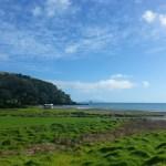 NZ 2013 – Día 22: Península de Coromandel — Auckland