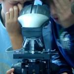 Liceo Scientifico_La Traccia