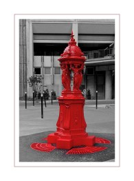 fontaine Wallace 13e