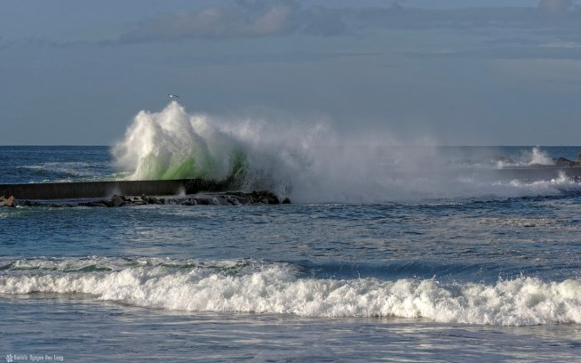 coel 111 vagues au Curnic