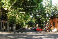 Streets of Mendoza (3)