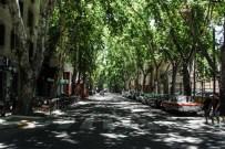 Streets of Mendoza (5)