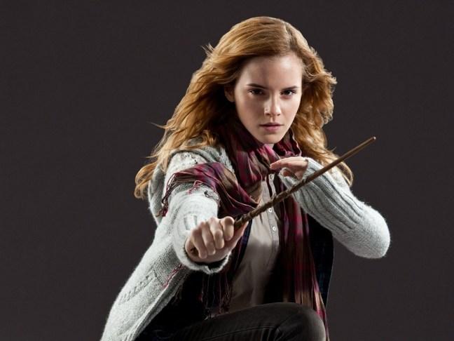 Hermione-Granger-Wallpaper-hermione-granger-25680197-1024-768