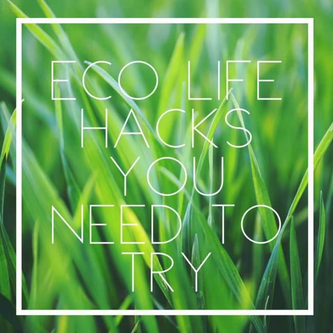 Eco Life Hacks You Need to Try