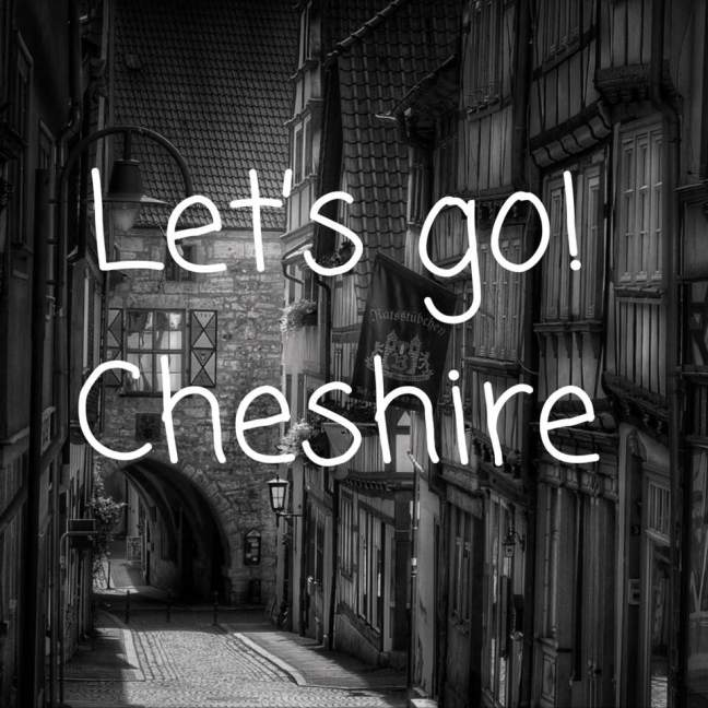 Let's Go! || Cheshire