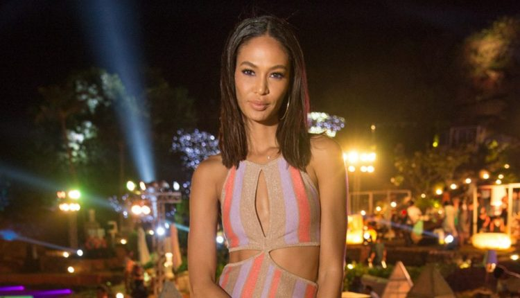 W Hotels Worldwide names Joan Smalls first global fashion innovator