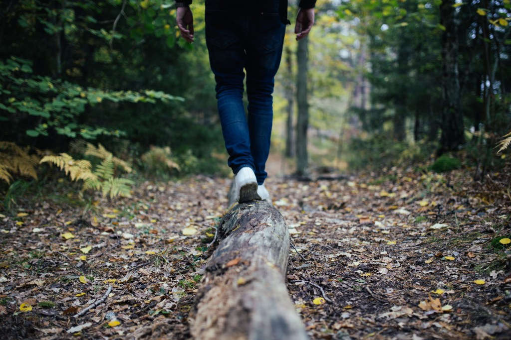 person walking on a log in the forest.