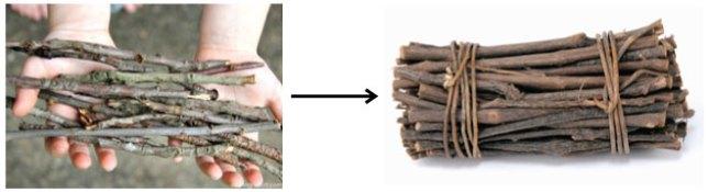 twig-analogy