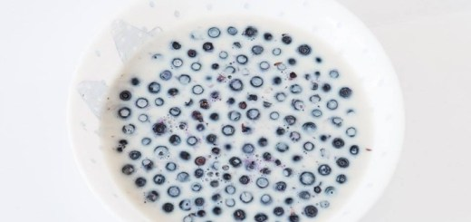bilberries and milk in a bowl