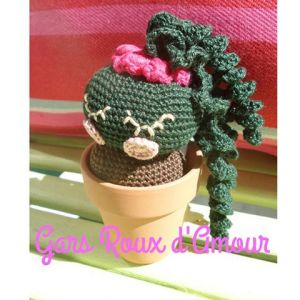 cactus crochet fait main les gars roux d'amour