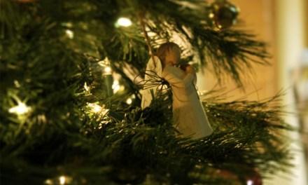 L'Angelo del dopo-Natale