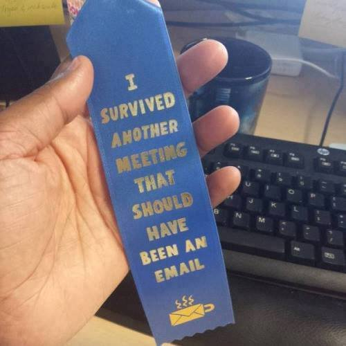 I survived another meeting htat should have been an email