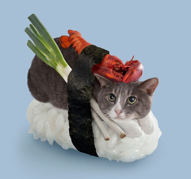 Sushi Cat Meow Thick