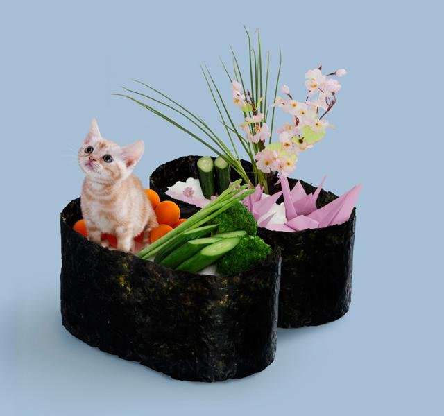 Sushi Cat Chibi