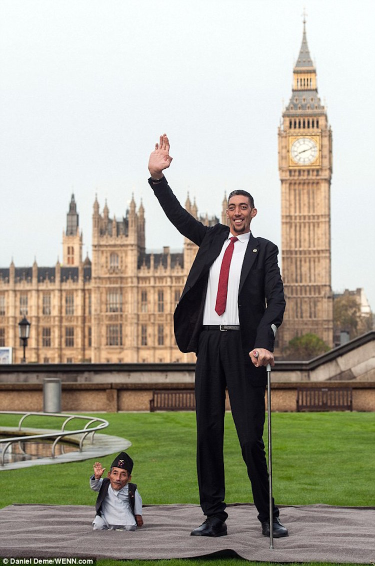 The World's Tallest Living Man and the World's Shortest ...