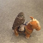 A Tiny Owl Rides Around the Room on a Singing Robotic Toy Horse