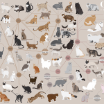 Cats Categorized, An Art Print That Organizes Felines By Physical Traits and Geographic Origin