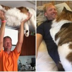 Samson aka Catstradamus, The Largest Cat in New York City and the DJ Human Who Shares His Space