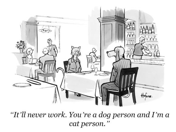 Image result for dog person vs cat person
