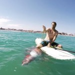 An Injured Giant Squid Clings Tightly Onto Paddle Board of the Surfer Attempting To Rescue It