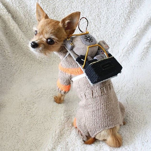 adorable-crochet-ghostbusters-dog-costume-for-pyret-the-chorkie-2 Crocheted and Knitted Ghostbusters Dog Costume Random