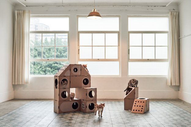 a-cat-thing-2-cats Wonderfully Modular, Interchangeable Cardboard Cat Dwellings Designed by Taiwanese Architects Random