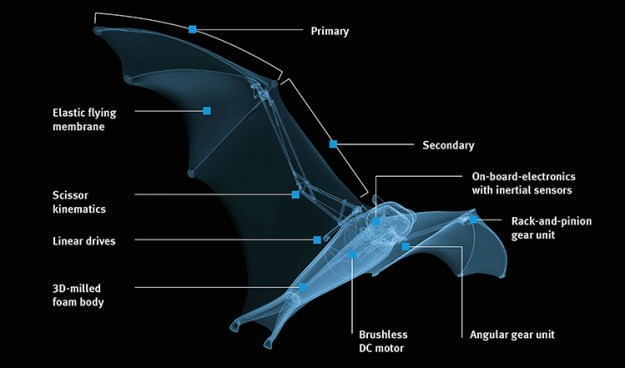bionicflyingfox-2 BionicFlyingFox, An Ultra-Lightweight Robotic Flying Fox Bat by Festo Random
