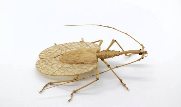 Bamboo-Violin-Beetle Highly Detailed Realistic Insects Crafted Out of Bamboo Random