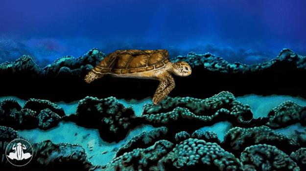 Sea-Turtle-Jonannes-Stotter Bodypainting Artist Transforms a Long Limbed Model Into a Stunning Swimming Sea Turtle Random